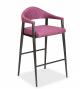 Elite Modern - Tiffany Counter Stool (4019FSB-26)